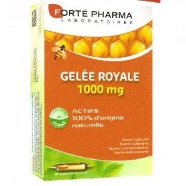 GELEE ROYALE AMPOULES 10ML FORTE PHARMA