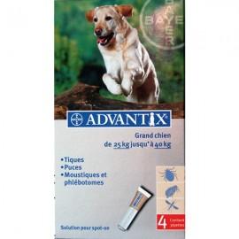 ADVANTIX GRAND CHIEN PIPETTE 4ML 4