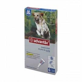 ADVANTIX GRAND CHIEN PIPETTE 4ML 6