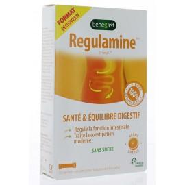 REGULAMINE SANTE & EQUILIBRE DIGESTIF SANS SUCRE 10 SACHETS POUDRE
