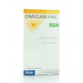 Omegabiane Capelan Bourrache PileJe 100 capsules