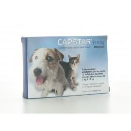 Capstar 11,4 mg Chien-Chat 6 comprimés