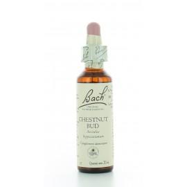 Chestnut Bud Fleur de Bach 20 ml